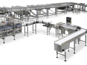 Complete and fully automatic system for high speed packing of biscuits on edge