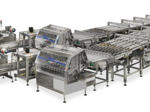 Complete and fully automatic system for high speed packing of crackers on edge