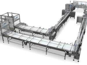 Fully automatic system for high speed packing of wafers